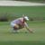 Caro Masson beim LPGA-Saisonfinale: Noch Luft nach oben