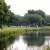 Alles im Fluss – Die Bedeutung von Rhythmus im Golfspiel