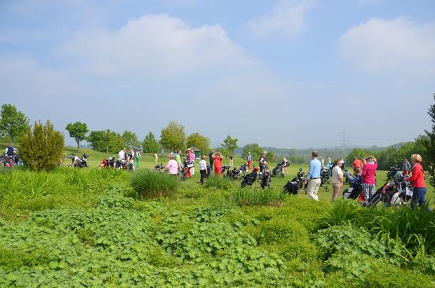 Hochbetrieb auf der Wiese beim Wiesenhof-Turnier
