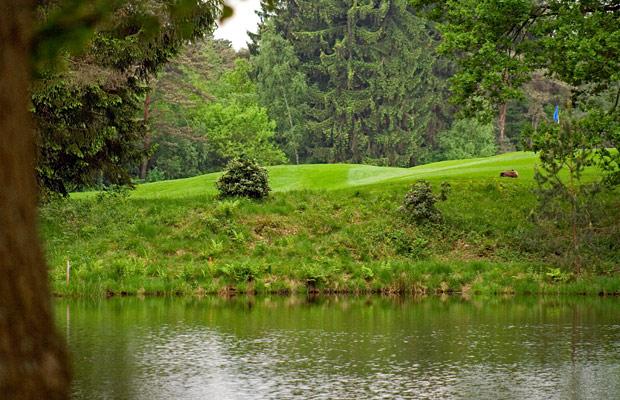 Tierspuren beim Golf